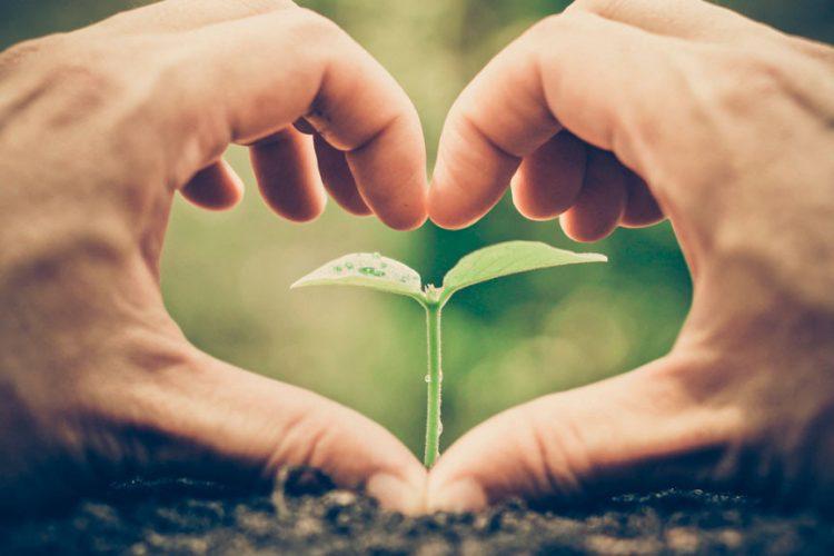 Beneficios ecológicos y económicos de los edificios sostenibles con griferías certificadas